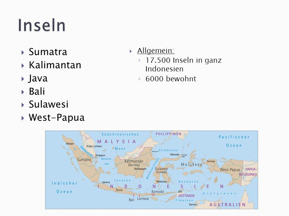 In Java und Sumatra In tropischen Regenwäldern Art ist gefährdet Hat die größten Blüten im Pflanzenreich