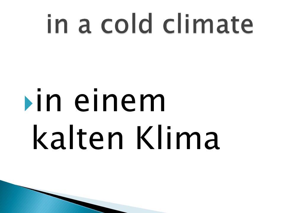in einem kalten Klima
