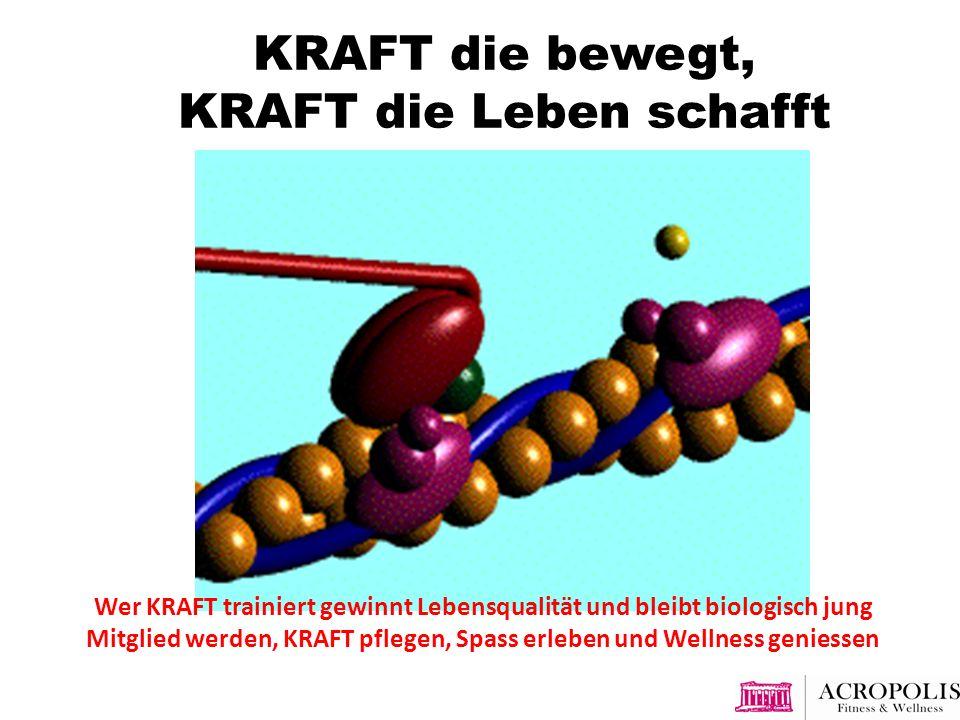 KRAFT die bewegt, KRAFT die Leben schafft Wer KRAFT trainiert gewinnt Lebensqualität und bleibt biologisch jung Mitglied werden, KRAFT pflegen, Spass