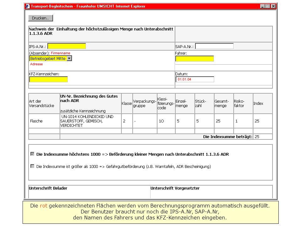 Die rot gekennzeichneten Flächen werden vom Berechnungsprogramm automatisch ausgefüllt. Der Benutzer braucht nur noch die IPS-A.Nr, SAP-A.Nr, den Name