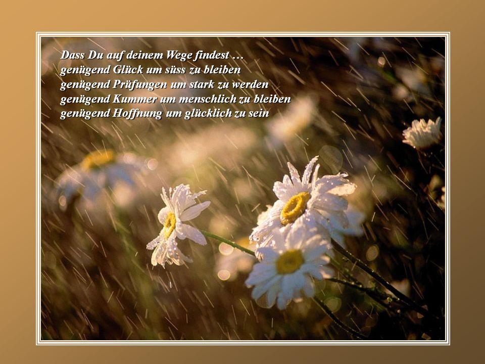 Dass Du auf deinem Wege findest … genügend Glück um süss zu bleiben genügend Prüfungen um stark zu werden genügend Kummer um menschlich zu bleiben genügend Hoffnung um glücklich zu sein