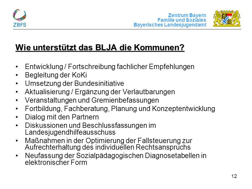 Zentrum Bayern Familie und Soziales Bayerisches Landesjugendamt 12 Wie unterstützt das BLJA die Kommunen? Entwicklung / Fortschreibung fachlicher Empf