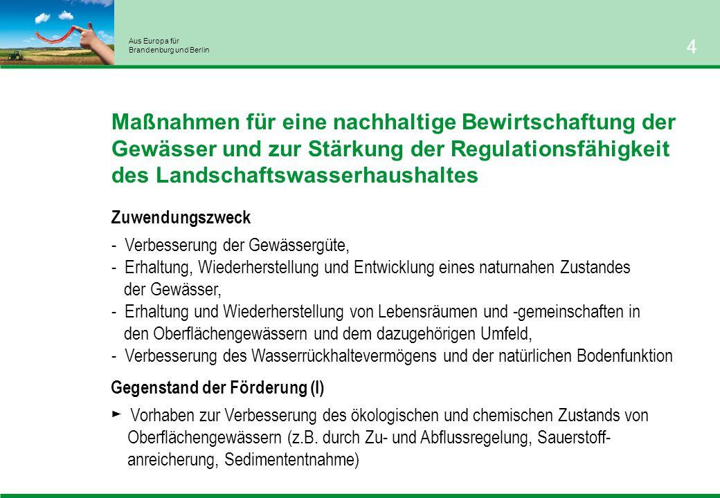 Aus Europa für Brandenburg und Berlin 5 Maßnahmen für eine nachhaltige Bewirtschaftung der Gewässer und zur Stärkung der Regulationsfähigkeit des Landschaftswasserhaushaltes Gegenstand der Förderung (II): Vorhaben zur naturnahen Gewässerentwicklung durch - Verbesserung der Gewässerstrukturgüte im Gewässer und im unmittelbaren Gewässerumfeld (z.B.