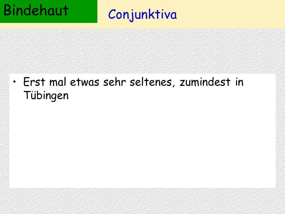 Conjunktiva Erst mal etwas sehr seltenes, zumindest in Tübingen Bindehaut