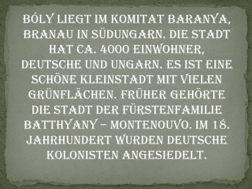Bóly liegt im Komitat Baranya, Branau in Südungarn. Die Stadt hat ca. 4000 Einwohner, Deutsche und Ungarn. Es ist eine Schöne Kleinstadt mit vielen Gr