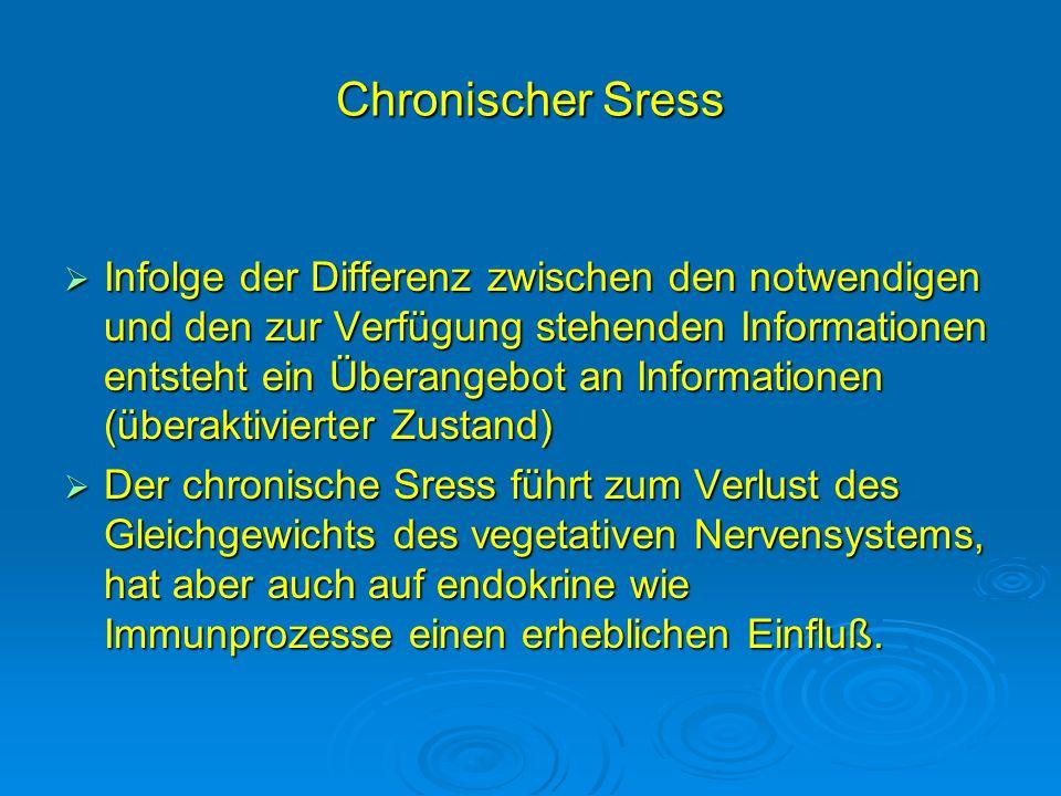 Chronischer Sress Infolge der Differenz zwischen den notwendigen und den zur Verfügung stehenden Informationen entsteht ein Überangebot an Information