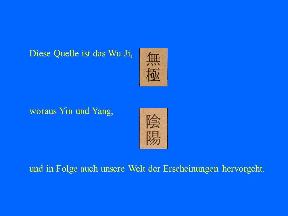 Diese Quelle ist das Wu Ji, woraus Yin und Yang, und in Folge auch unsere Welt der Erscheinungen hervorgeht.