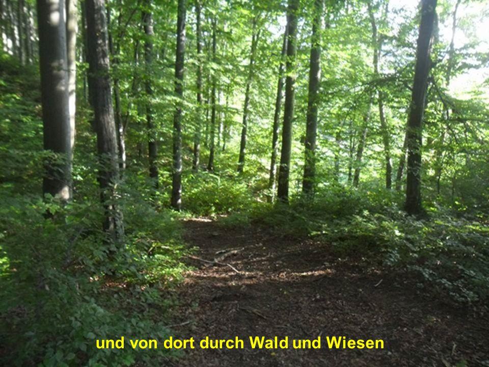 Traurig gehe ich dann weiter über Schönberg und Schöntal
