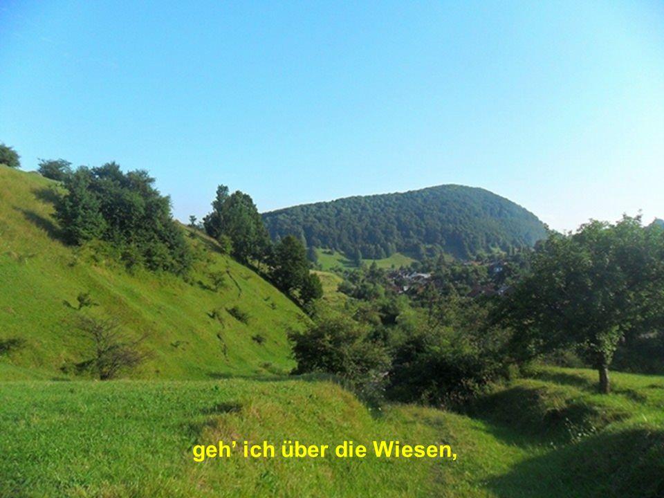 Den Berg hinauf bis Hildegard