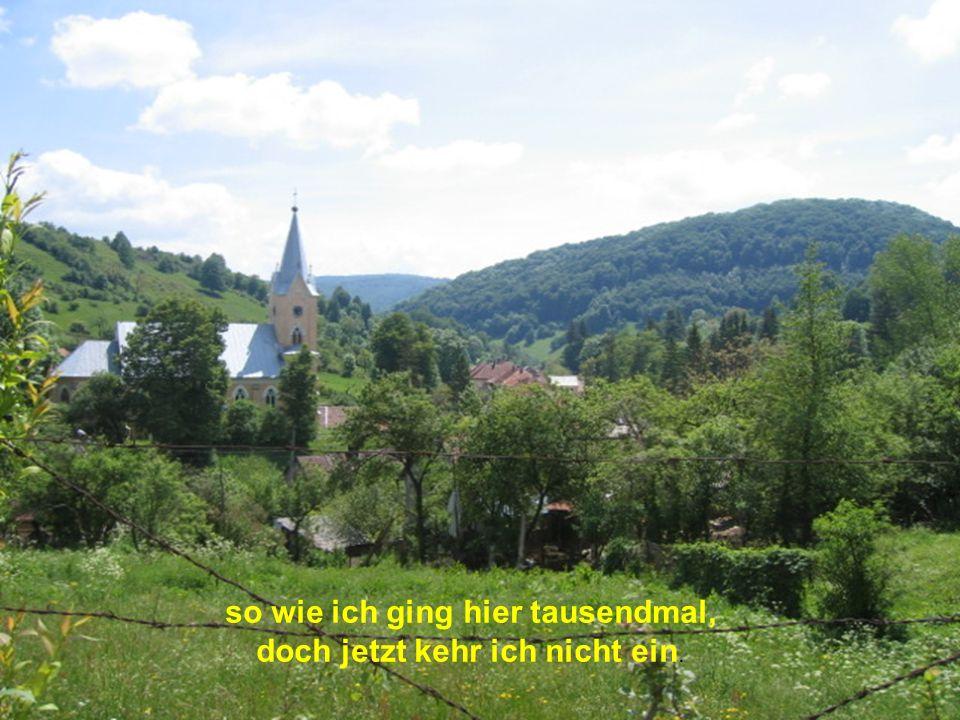 Den Berg hinab geh ich ins Tal bis runter zum Verein,
