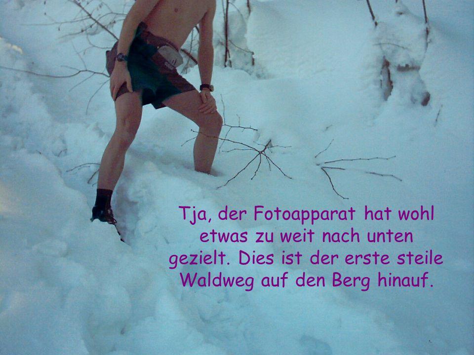 Tja, der Fotoapparat hat wohl etwas zu weit nach unten gezielt. Dies ist der erste steile Waldweg auf den Berg hinauf.