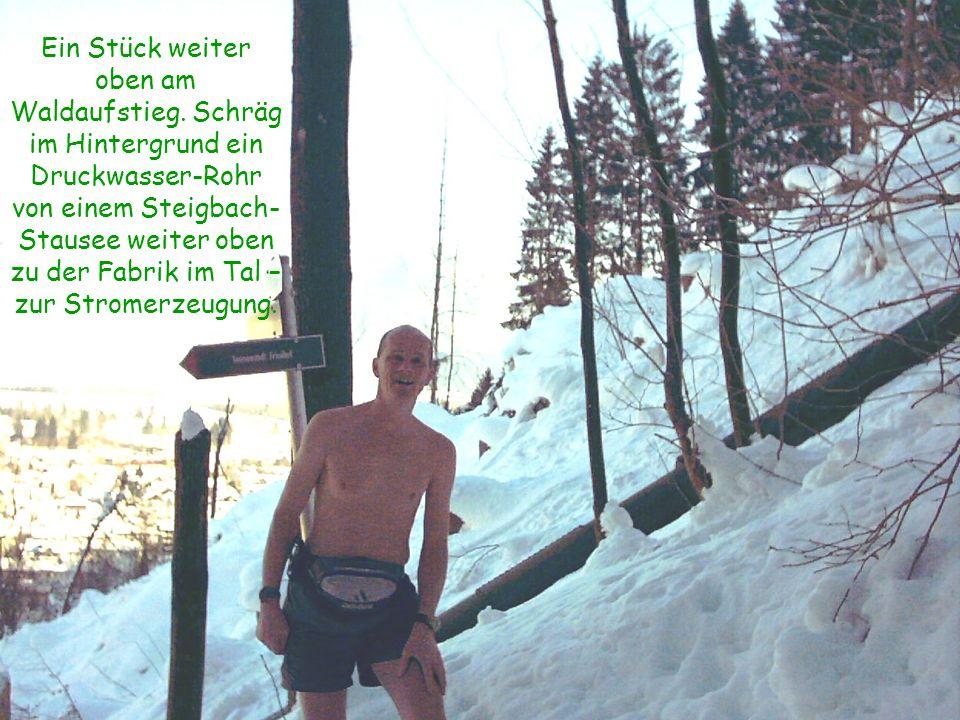 Ein Stück weiter oben am Waldaufstieg. Schräg im Hintergrund ein Druckwasser-Rohr von einem Steigbach- Stausee weiter oben zu der Fabrik im Tal – zur
