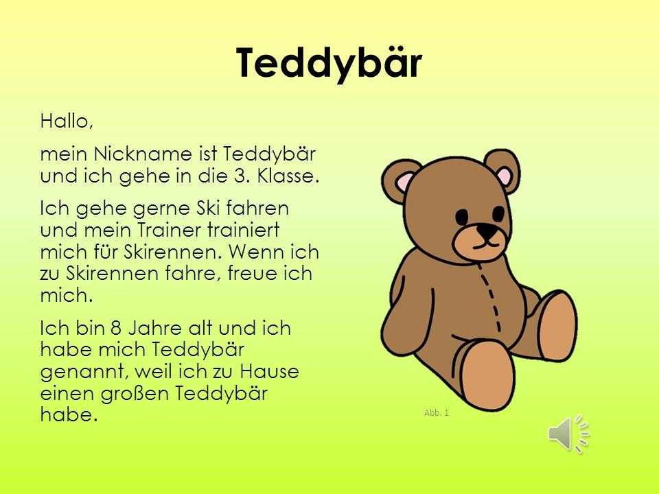 Teddybär Hallo, mein Nickname ist Teddybär und ich gehe in die 3.