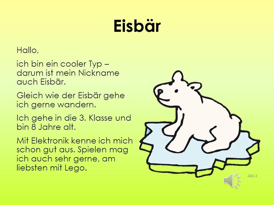Eisbär Hallo, ich bin ein cooler Typ – darum ist mein Nickname auch Eisbär.