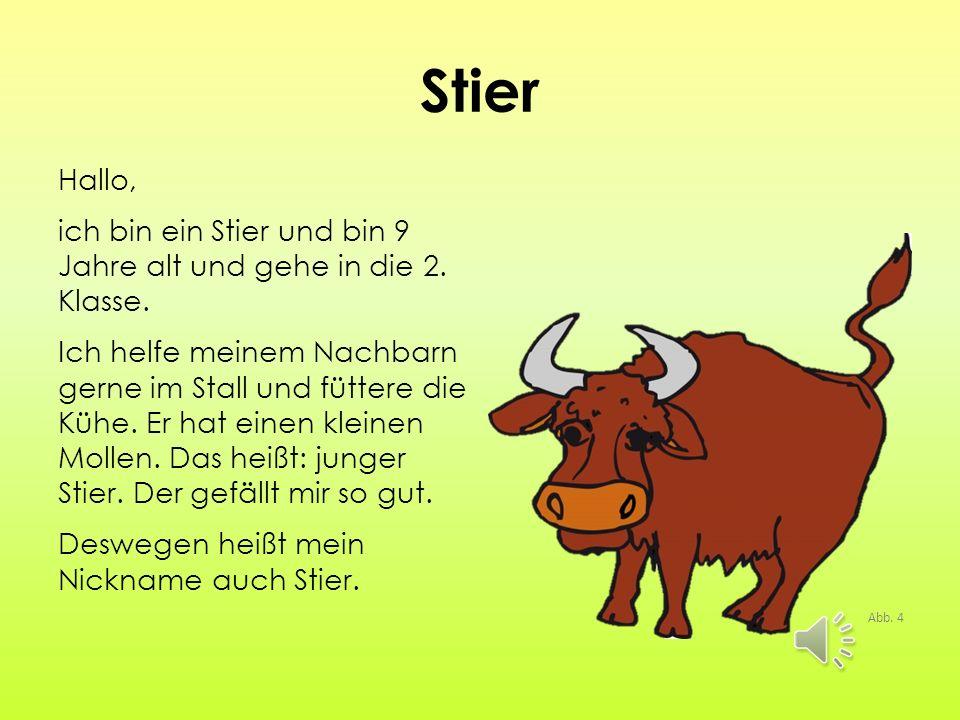 Stier Hallo, ich bin ein Stier und bin 9 Jahre alt und gehe in die 2.