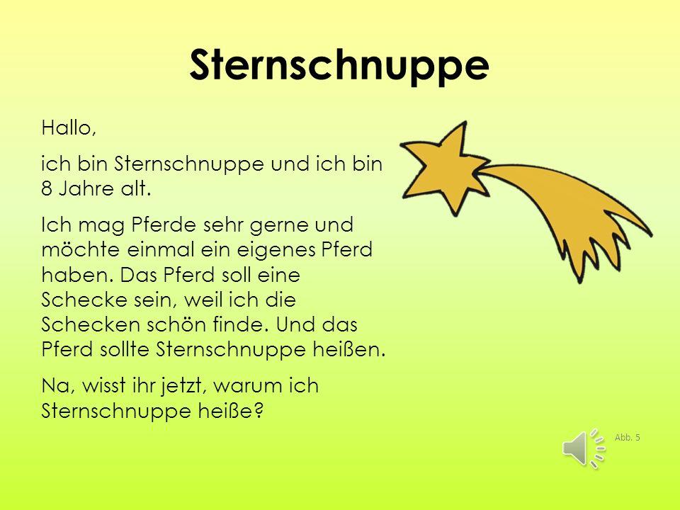 Sternschnuppe Hallo, ich bin Sternschnuppe und ich bin 8 Jahre alt.