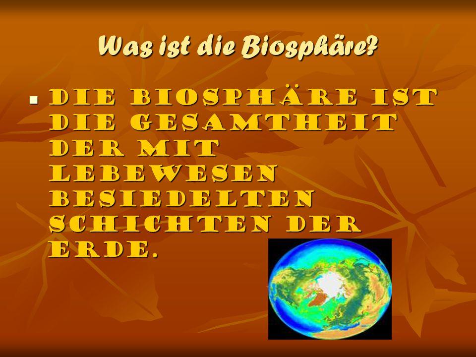 Was ist die Biosphäre? Die Biosphäre ist die Gesamtheit der mit Lebewesen besiedelten Schichten der Erde. Die Biosphäre ist die Gesamtheit der mit Leb