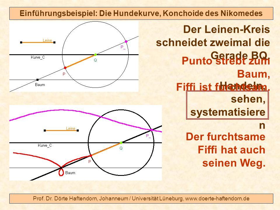 Prof. Dr. Dörte Haftendorn, Johanneum / Universität Lüneburg, www.doerte-haftendorn.de Einführungsbeispiel: Die Hundekurve, Konchoide des Nikomedes De