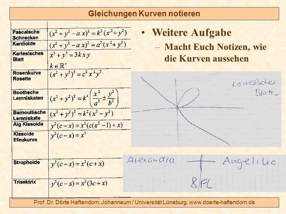 Prof. Dr. Dörte Haftendorn, Johanneum / Universität Lüneburg, www.doerte-haftendorn.de Gleichungen Kurven notieren Weitere Aufgabe –Macht Euch Notizen