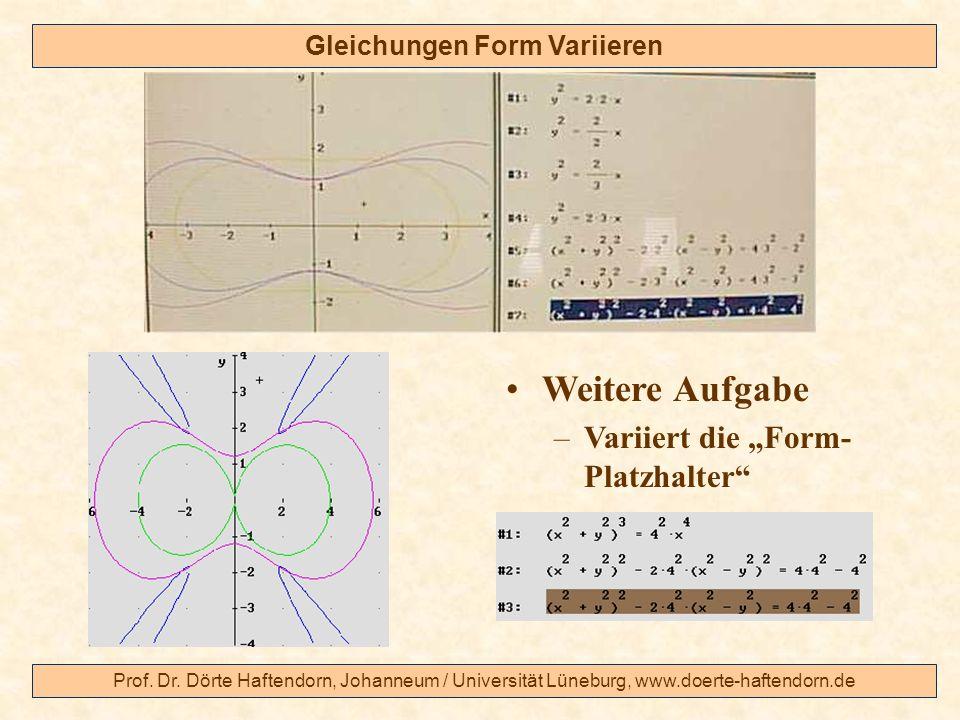 Prof. Dr. Dörte Haftendorn, Johanneum / Universität Lüneburg, www.doerte-haftendorn.de Gleichungen Form Variieren Weitere Aufgabe –Variiert die Form-