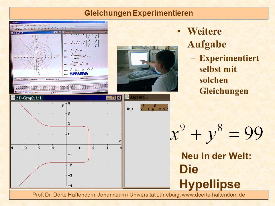 Prof. Dr. Dörte Haftendorn, Johanneum / Universität Lüneburg, www.doerte-haftendorn.de Gleichungen Experimentieren Weitere Aufgabe –Experimentiert sel