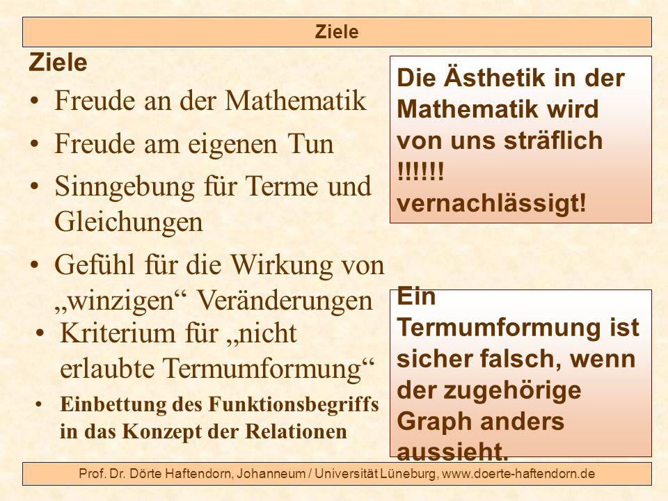Prof. Dr. Dörte Haftendorn, Johanneum / Universität Lüneburg, www.doerte-haftendorn.de Ziele Ein Termumformung ist sicher falsch, wenn der zugehörige