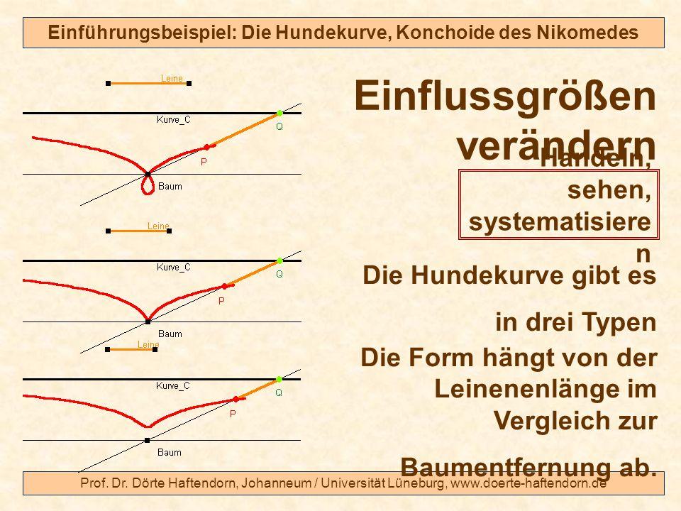 Prof. Dr. Dörte Haftendorn, Johanneum / Universität Lüneburg, www.doerte-haftendorn.de Einführungsbeispiel: Die Hundekurve, Konchoide des Nikomedes Di