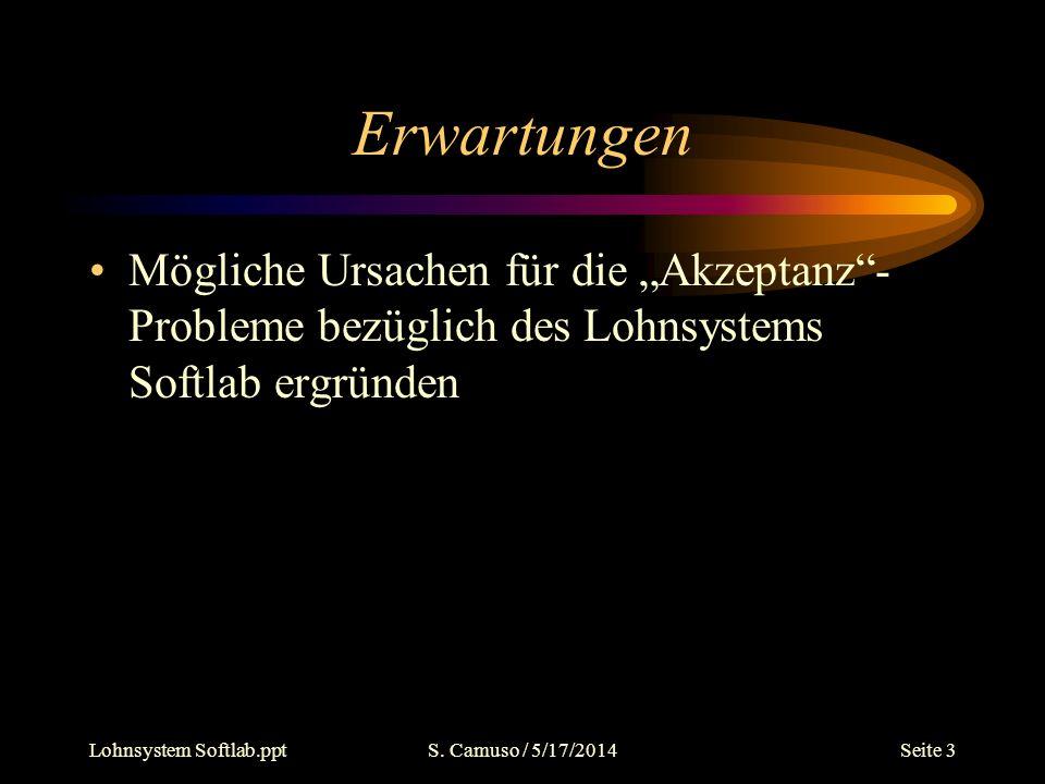 Lohnsystem Softlab.pptS. Camuso / 5/17/2014Seite 3 Erwartungen Mögliche Ursachen für die Akzeptanz- Probleme bezüglich des Lohnsystems Softlab ergründ