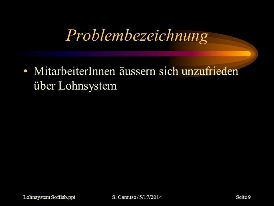 Lohnsystem Softlab.pptS. Camuso / 5/17/2014Seite 9 Problembezeichnung MitarbeiterInnen äussern sich unzufrieden über Lohnsystem