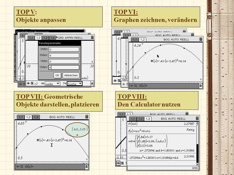 TOP V: Objekte anpassen TOP VI: Graphen zeichnen, verändern TOP VII: Geometrische Objekte darstellen, platzieren TOP VIII: Den Calculator nutzen