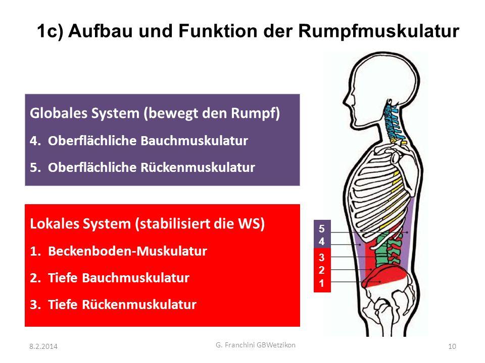 8.2.2014 G. Franchini GBWetzikon 10 Globales System (bewegt den Rumpf) 4.Oberflächliche Bauchmuskulatur 5.Oberflächliche Rückenmuskulatur Lokales Syst