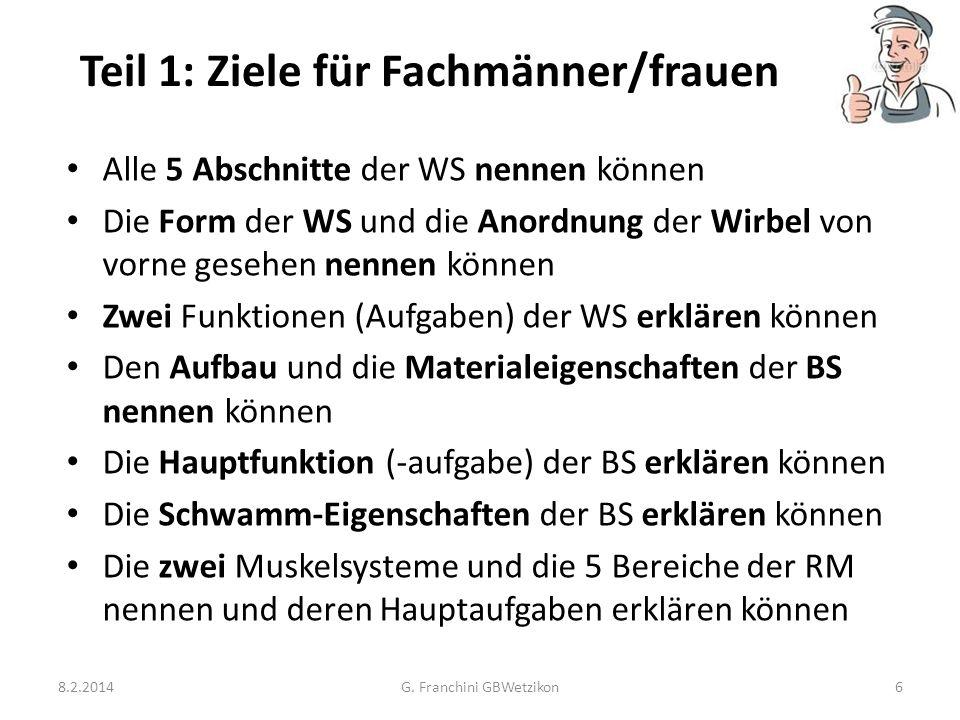 Teil 1: Ziele für Fachmänner/frauen 8.2.2014G. Franchini GBWetzikon6 Alle 5 Abschnitte der WS nennen können Die Form der WS und die Anordnung der Wirb