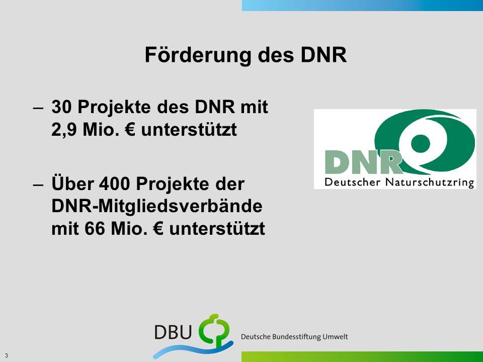 3 Förderung des DNR –30 Projekte des DNR mit 2,9 Mio. unterstützt –Über 400 Projekte der DNR-Mitgliedsverbände mit 66 Mio. unterstützt