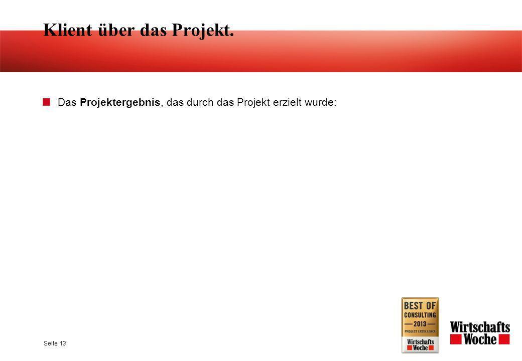 Klient über das Projekt. Das Projektergebnis, das durch das Projekt erzielt wurde: Seite 13