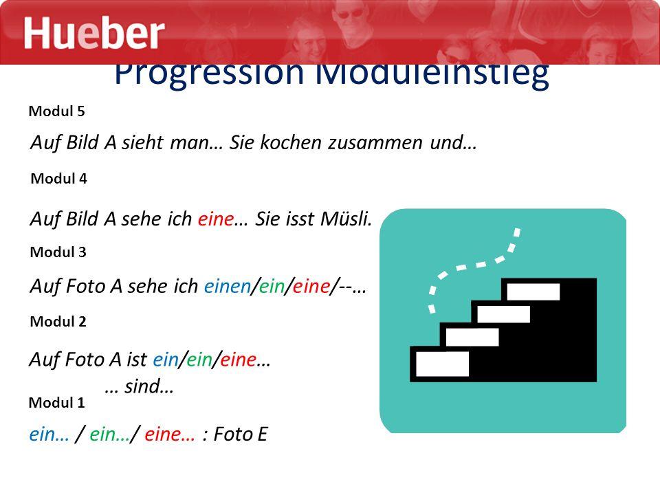 ein… / ein…/ eine… : Foto E Auf Foto A sehe ich einen/ein/eine/--… Progression Moduleinstieg Modul 1 Modul 2 Modul 3 Modul 4 Modul 5 Auf Foto A ist ei
