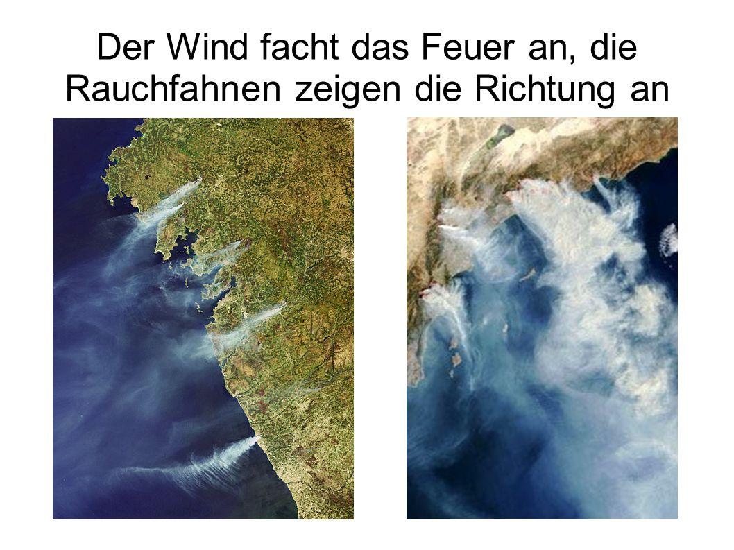 Der Wind facht das Feuer an, die Rauchfahnen zeigen die Richtung an