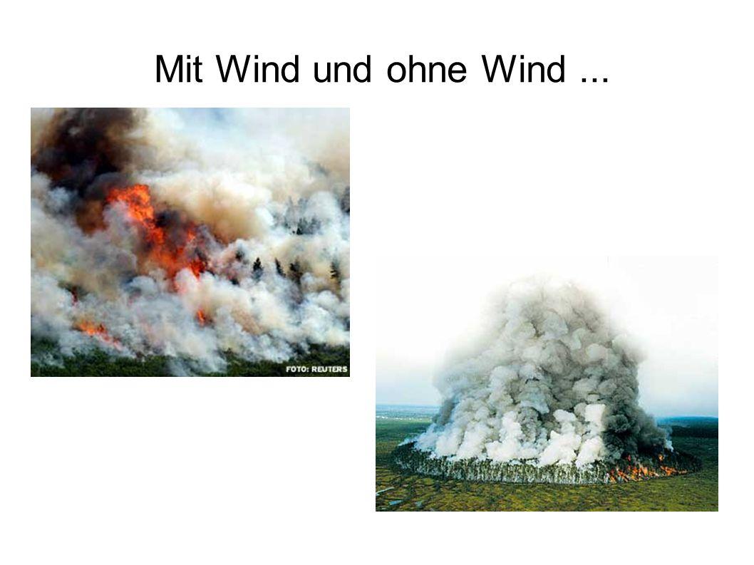 Mit Wind und ohne Wind...
