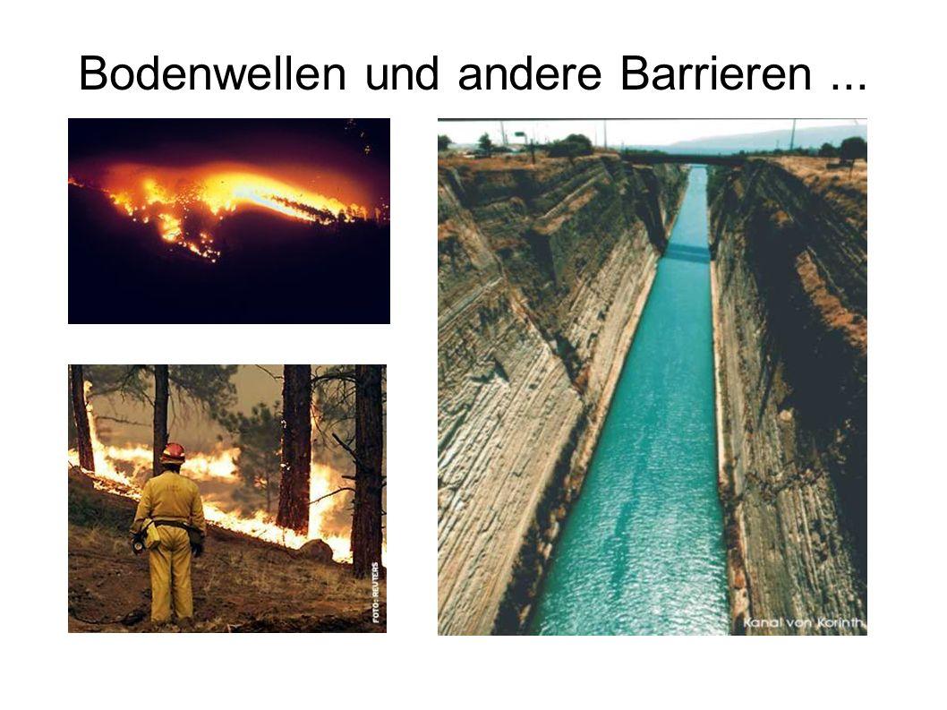 Bodenwellen und andere Barrieren...
