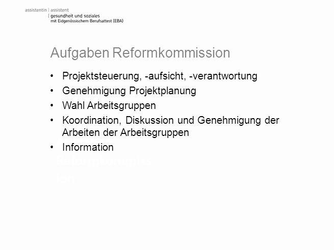 Aufgaben Reformkommiss ion Projektsteuerung, -aufsicht, -verantwortung Genehmigung Projektplanung Wahl Arbeitsgruppen Koordination, Diskussion und Gen