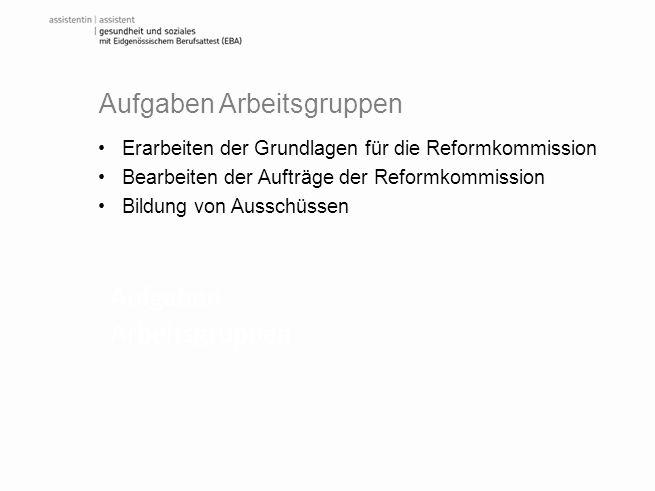 Aufgaben Arbeitsgruppen Erarbeiten der Grundlagen für die Reformkommission Bearbeiten der Aufträge der Reformkommission Bildung von Ausschüssen Aufgab
