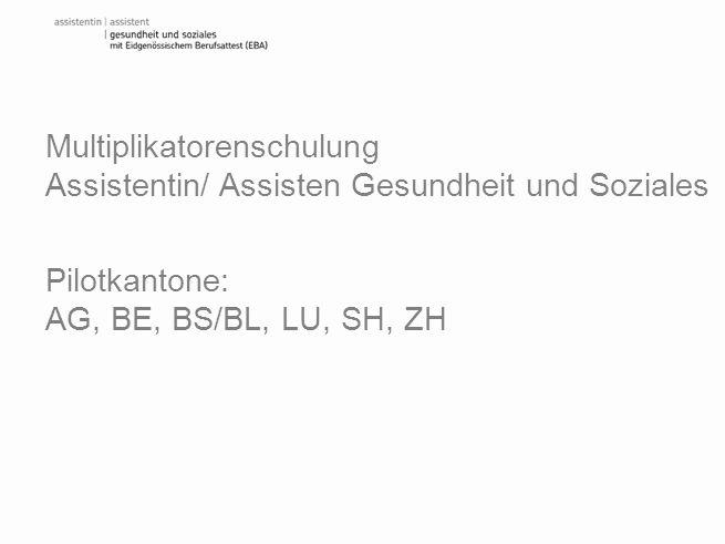 Multiplikatorenschulung Assistentin/ Assisten Gesundheit und Soziales Pilotkantone: AG, BE, BS/BL, LU, SH, ZH