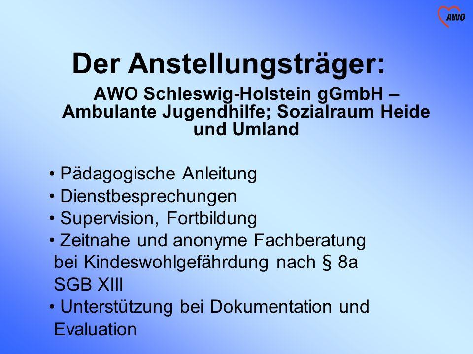 Der Anstellungsträger: AWO Schleswig-Holstein gGmbH – Ambulante Jugendhilfe; Sozialraum Heide und Umland Pädagogische Anleitung Dienstbesprechungen Su