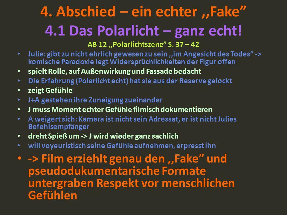 4. Abschied – ein echter,,Fake 4.1 Das Polarlicht – ganz echt! AB 12,,Polarlichtszene S. 37 – 42 Julie: gibt zu nicht ehrlich gewesen zu sein,,im Ange