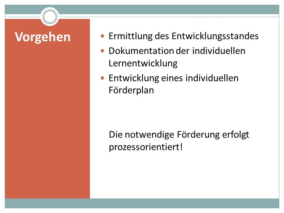 Ermittlung des Entwicklungsstandes Dokumentation der individuellen Lernentwicklung Entwicklung eines individuellen Förderplan Die notwendige Förderung erfolgt prozessorientiert.