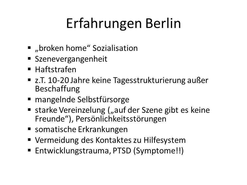 Erfahrungen Berlin broken home Sozialisation Szenevergangenheit Haftstrafen z.T.