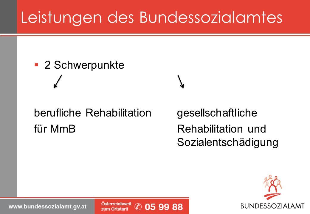 Leistungen des Bundessozialamtes 2 Schwerpunkte berufliche Rehabilitation gesellschaftliche für MmBRehabilitation und Sozialentschädigung