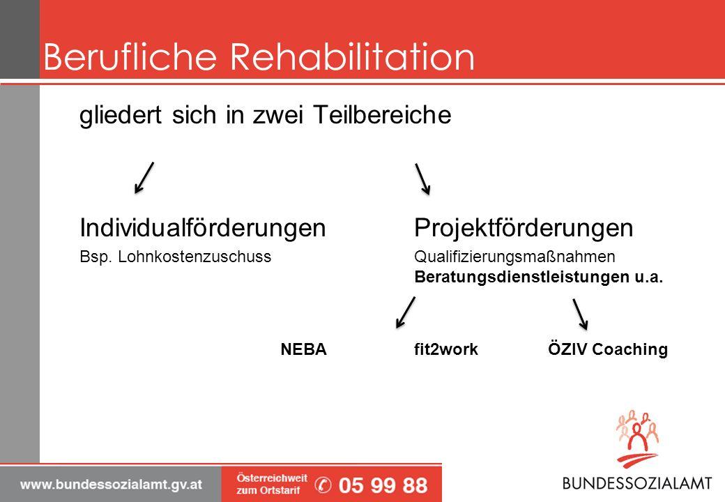 Berufliche Rehabilitation gliedert sich in zwei Teilbereiche IndividualförderungenProjektförderungen Bsp.