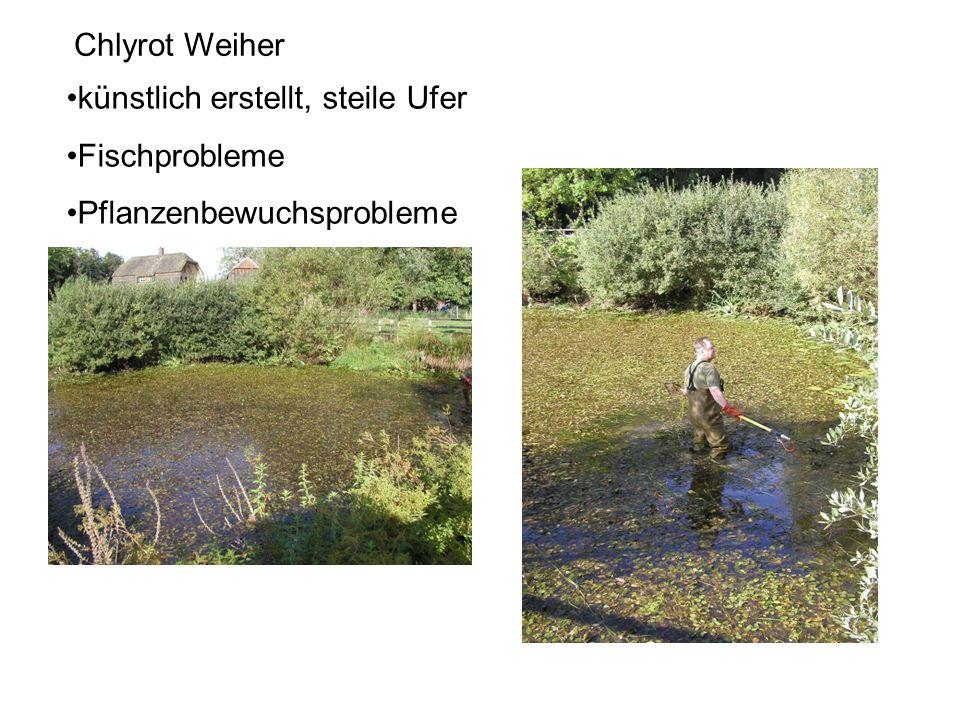 künstlich erstellt, steile Ufer Fischprobleme Pflanzenbewuchsprobleme Chlyrot Weiher