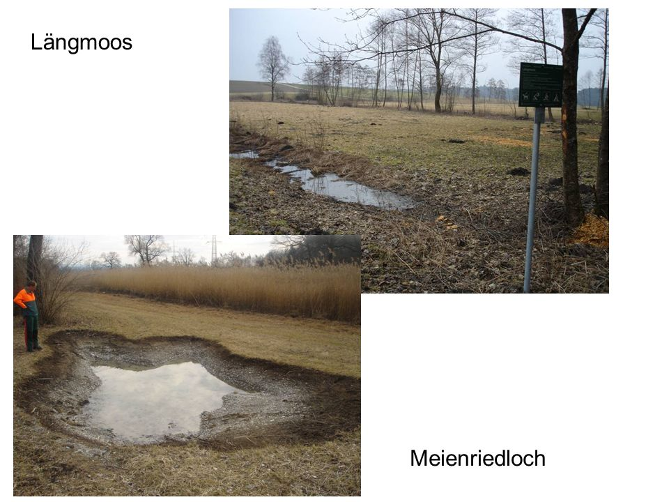 Längmoos Meienriedloch