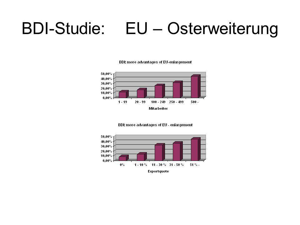 BDI-Studie: EU – Osterweiterung